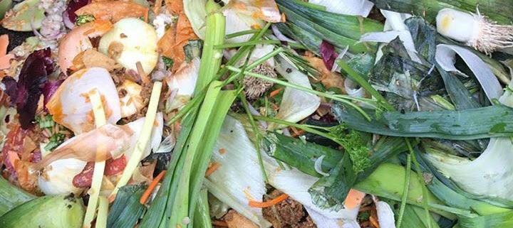 Organics Waste